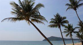 AIR CARAIBES : DROITS DES PASSAGERS